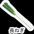 商品-野菜葉茎菜-長ねぎ