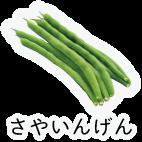 商品-野菜豆類-さやいんげん