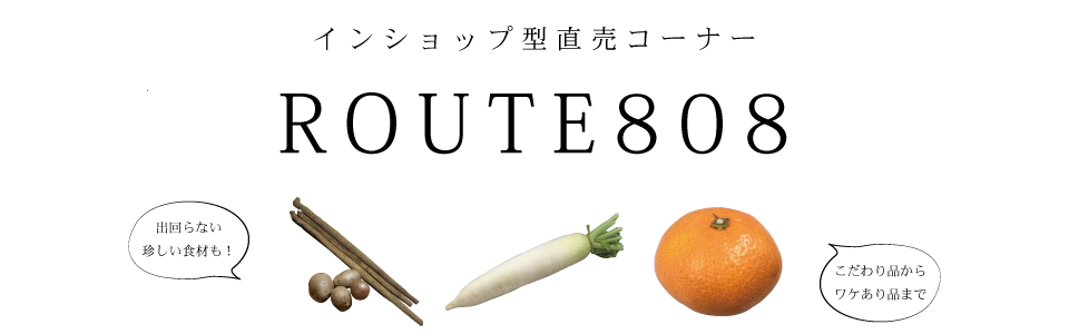 ROUTE808_banner