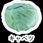 商品-野菜葉茎菜-キャベツ