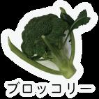 商品-野菜葉茎菜-ブロッコリー