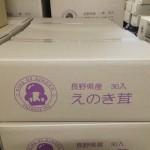 えのき茸 300g DBダンボール箱 (1)