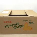 バターナッツかぼちゃ (4)