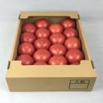 トマト 飛騨20玉 (6)