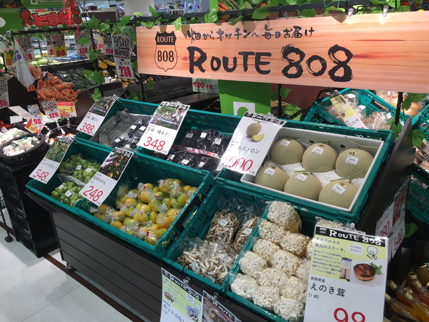 20160930 ROUTE808 名古屋本店 (9)